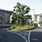 葦毛塚(あしげづか)